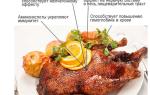 Какая польза мяса гуся?