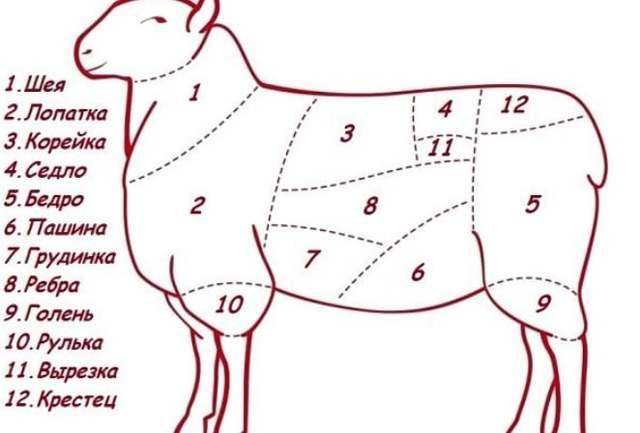 Как разделать барана: техника забоя и способы приготовления