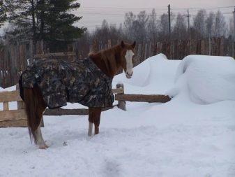 Как сделать попону для игрушечной лошади