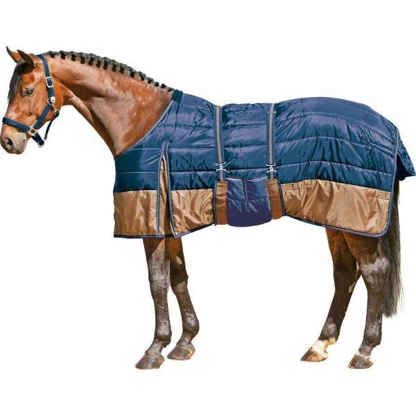 Амуниция для лошадей - из чего состоит и какие функции выполняет